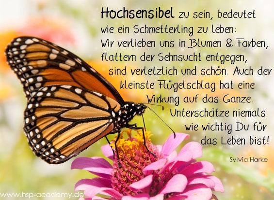 Von der Raupe zum Schmetterling, eine Parabel für Hochsensible