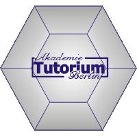 akademie tutorium berlin dimant